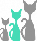 size-med-cat-min
