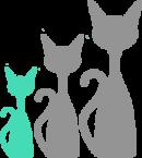 size-small-cat-min